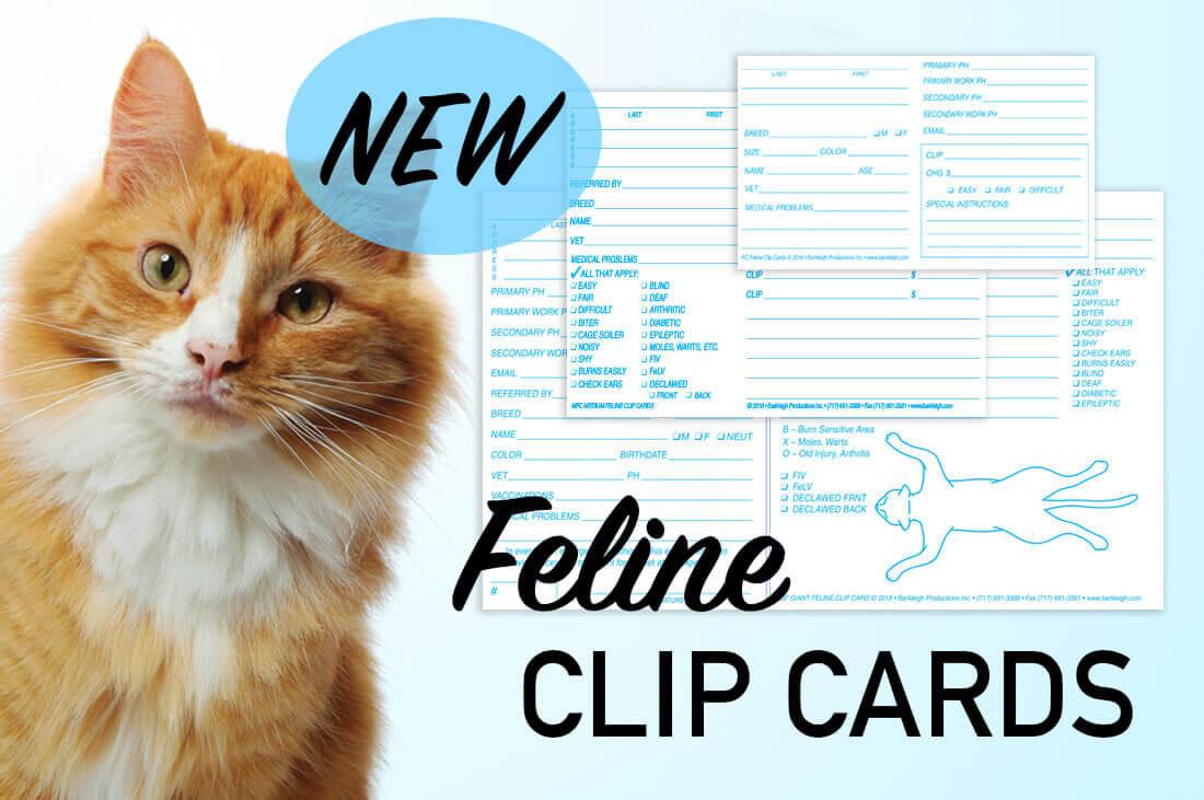 Feline Clip Card